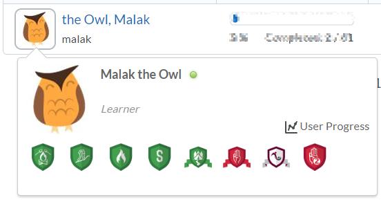 WBI_-_OWL_progress_badges.png